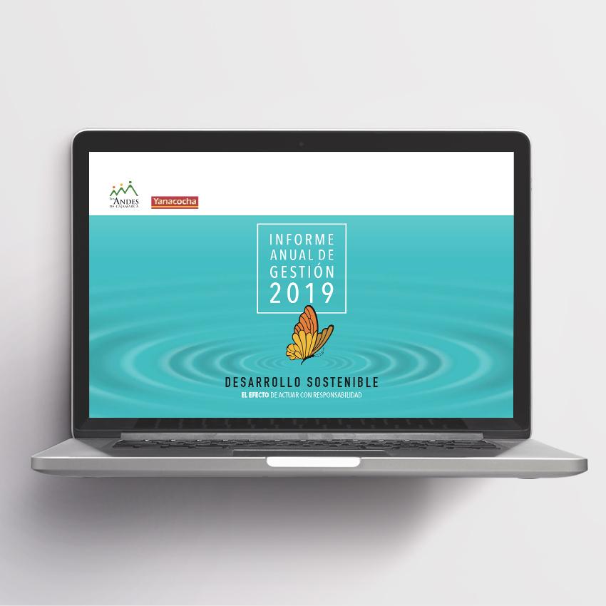 Asociación Los Andes de Cajamarca. Informe anual de gestión 2019.